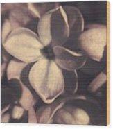 Of Lilac Tales She Tells Wood Print