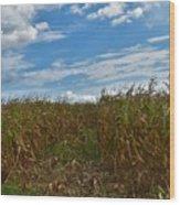 Of The Corn  Wood Print