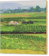 Off The Beaten Track Vietnam Viewed Through Train Window Filters  Wood Print
