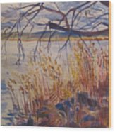 Off The Piermont Pier Wood Print