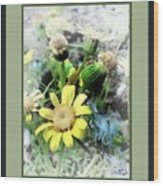 Off Yellows Wood Print