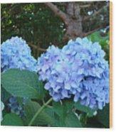 Office Art Hydrangea Flowers Blue Giclee Prints Floral Baslee Troutman Wood Print