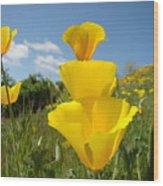 Office Art Poppy Flowers Poppies Giclee Prints Baslee Troutman Wood Print