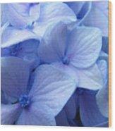 Office Art Prints Blue Hydrangea Flowers Giclee Baslee Troutman Wood Print
