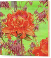 Office Art Prints Orange Azalea Flowers Landscape 13 Giclee Prints Baslee Troutman Wood Print