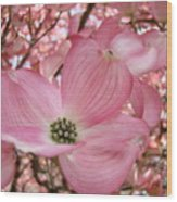 Office Art Prints Pink Flowering Dogwood Tree 1 Giclee Prints Baslee Troutman Wood Print