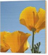 Office Art Prints Poppies 12 Poppy Flowers Giclee Prints Baslee Troutman Wood Print