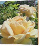 Office Art Prints Rose Peach Orange Rose Flower Baslee Troutman Wood Print