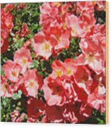 Office Art Rose Garden Landscape Art Pink Roses Giclee Baslee Troutman Wood Print