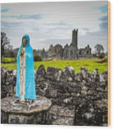 Official Greeter At Ireland's Quin Abbey National Monument Wood Print