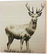 Oh Deer  Wood Print