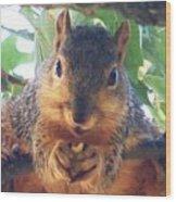Oh Nuts Wood Print