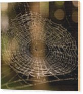Oh What Tangled Webs.... Wood Print