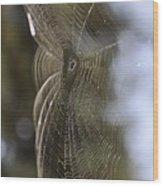 Oh What Webs We Weave Wood Print