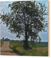 Ohio Back Roads Wood Print