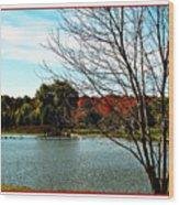 Ohio Duck Pond Wood Print