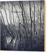 Ohio Metro Pond Wood Print