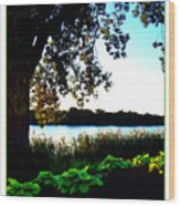 Ohio Pond Wood Print