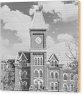 Ohio State University Hall Wood Print by University Icons