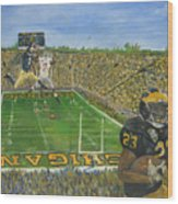 Ohio State Vs. Michigan 100th Game Wood Print