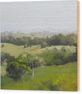 Oil Painting From Mt Cooroy Sunshine Coast Queensland Australia Wood Print