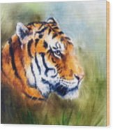 Oil Painting Of A Bright Mighty Tiger Head On A Soft Toned Abstr Wood Print