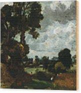Oil Sketch Of Stoke-by-nayland Wood Print