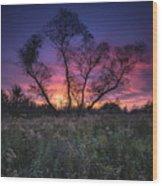 Ojibway Sunset Wood Print