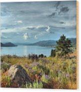 Okanagan Lake In The Spring Wood Print