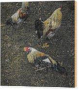 Okemos Public Chicken Wood Print