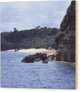 Okinawa Beach 10 Wood Print
