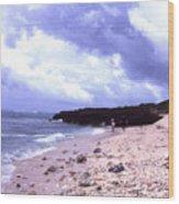 Okinawa Beach 15 Wood Print