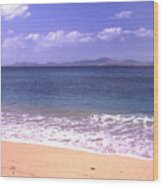 Okinawa Beach 16 Wood Print