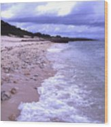 Okinawa Beach 17 Wood Print