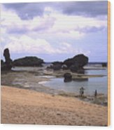 Okinawa Beach 18 Wood Print