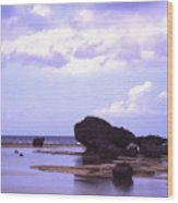 Okinawa Beach 20 Wood Print