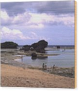 Okinawa Beach 3 Wood Print