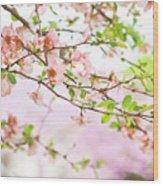 Oklahoma Spring Wood Print