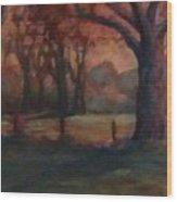 Oklahoma Sundown Wood Print