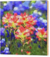 Oklahoma Wildflowers Wood Print