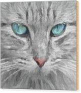 Ol' Blue Eyes Wood Print