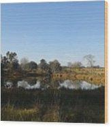 Old 84 Pond, Nr. Boston, Ga  Wood Print