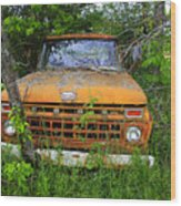 Old Abandoned Ford Truck In The Forest Wood Print