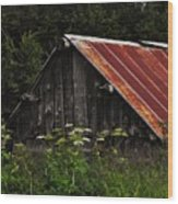Old Alaskan Shed Wood Print