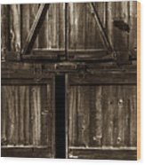 Old Barn Door - Toned Wood Print