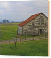 Old Barn In The Mustard Fields Wood Print