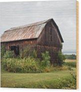 Old Barn On Seneca Lake - Finger Lakes - New York State Wood Print by Gary Heller