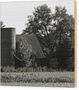 Old Barn Outbuildings And Silo  Wood Print