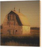 Barn Of North Dakota Wood Print