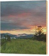 Old Beech Spring Sunset Wood Print